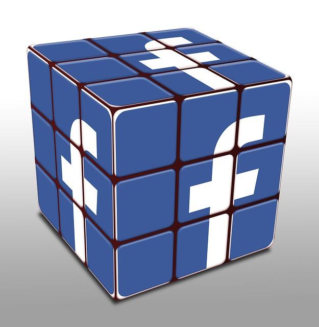 Facebook leader des réseaux sociaux?