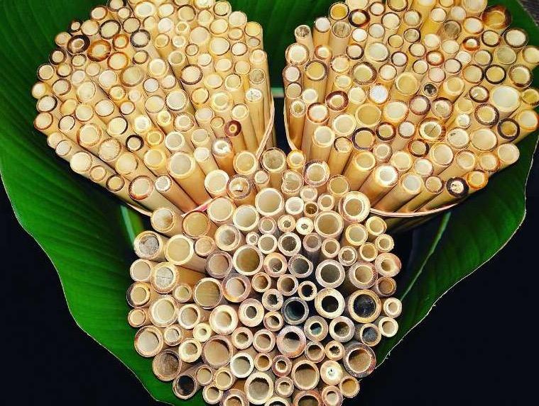Pourquoi utiliser des pailles en bambou ?